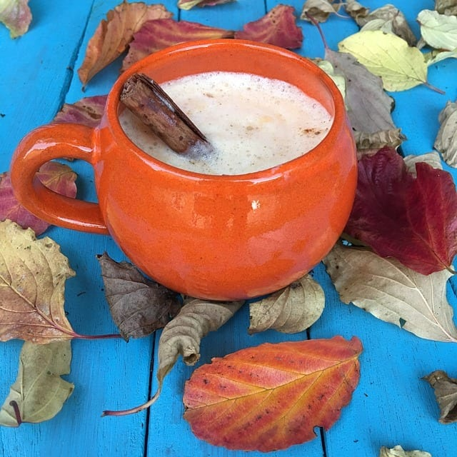 Pumpkin Spice Chai: Easy, 5-minute Recipe