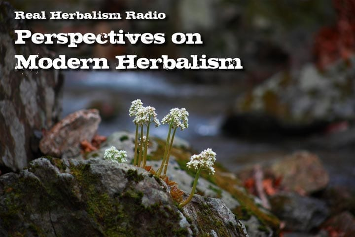 Show 132: Dr. Bill Rawls – Perspectives On Modern Herbalism