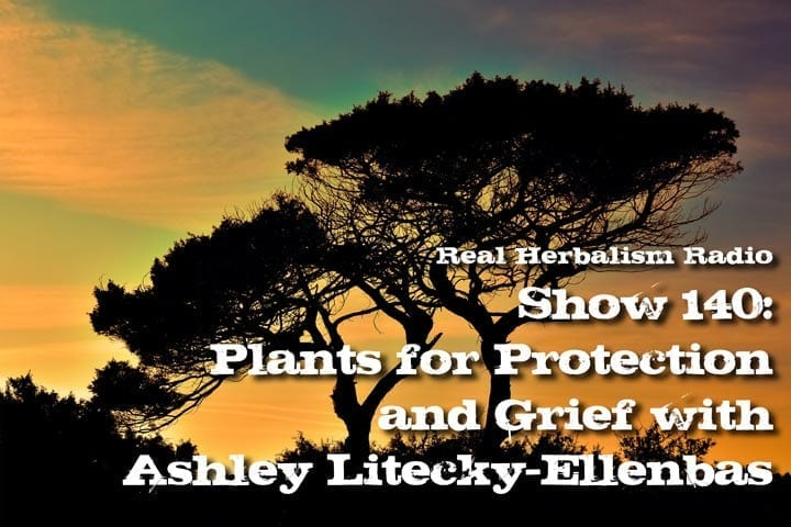 Show 140: Plants For Protection And Grief With Ashley Litecky-Ellenbas
