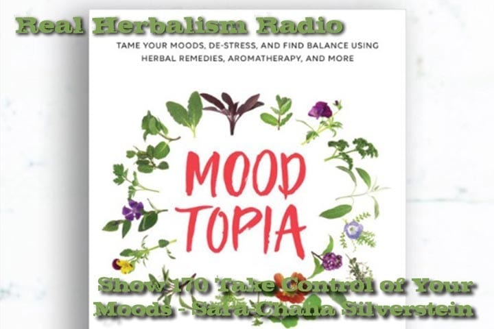 Show 170 Take Control Of Your Moods - Sara-Chana Silverstein