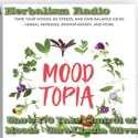 Take Control Of Your Moods – Sara-Chana Silverstein – Show 170