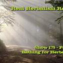 Forest Bathing For Herbalists – Show 176 Real Herbalism Radio