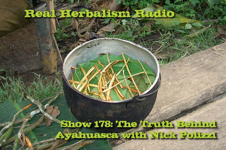 Truth-about-ayahuasca