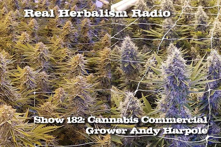 Cannabis With Commercial Grower, Andy Harpole Of Emerald Valley Growers – Show 182