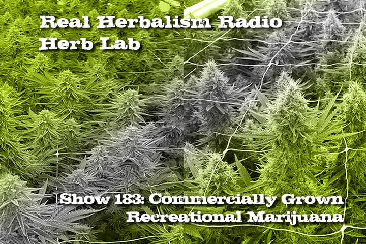 Show-183-Commercially-Grown-Recreational-Marijuana
