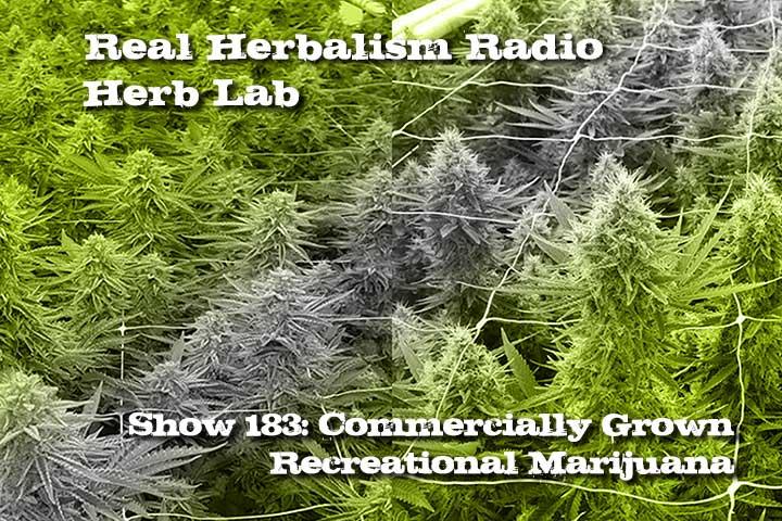 Show-183-Commercially-Grown-Recreational-Marijuana