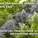 Commercially Grown Recreational Marijuana Herb Lab – Show 183