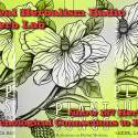 Psychological Connections To Plants – Herb Lab – Show 187