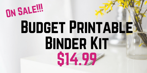 Budget Printable Binder Kit (7)