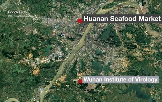 Marché de Wuhan et Institut virologie