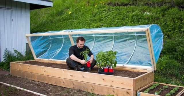 Diy Hinged Hoop House For Raised Bed The Prepared Page
