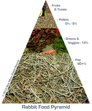 The Rabbit Food Pyramid
