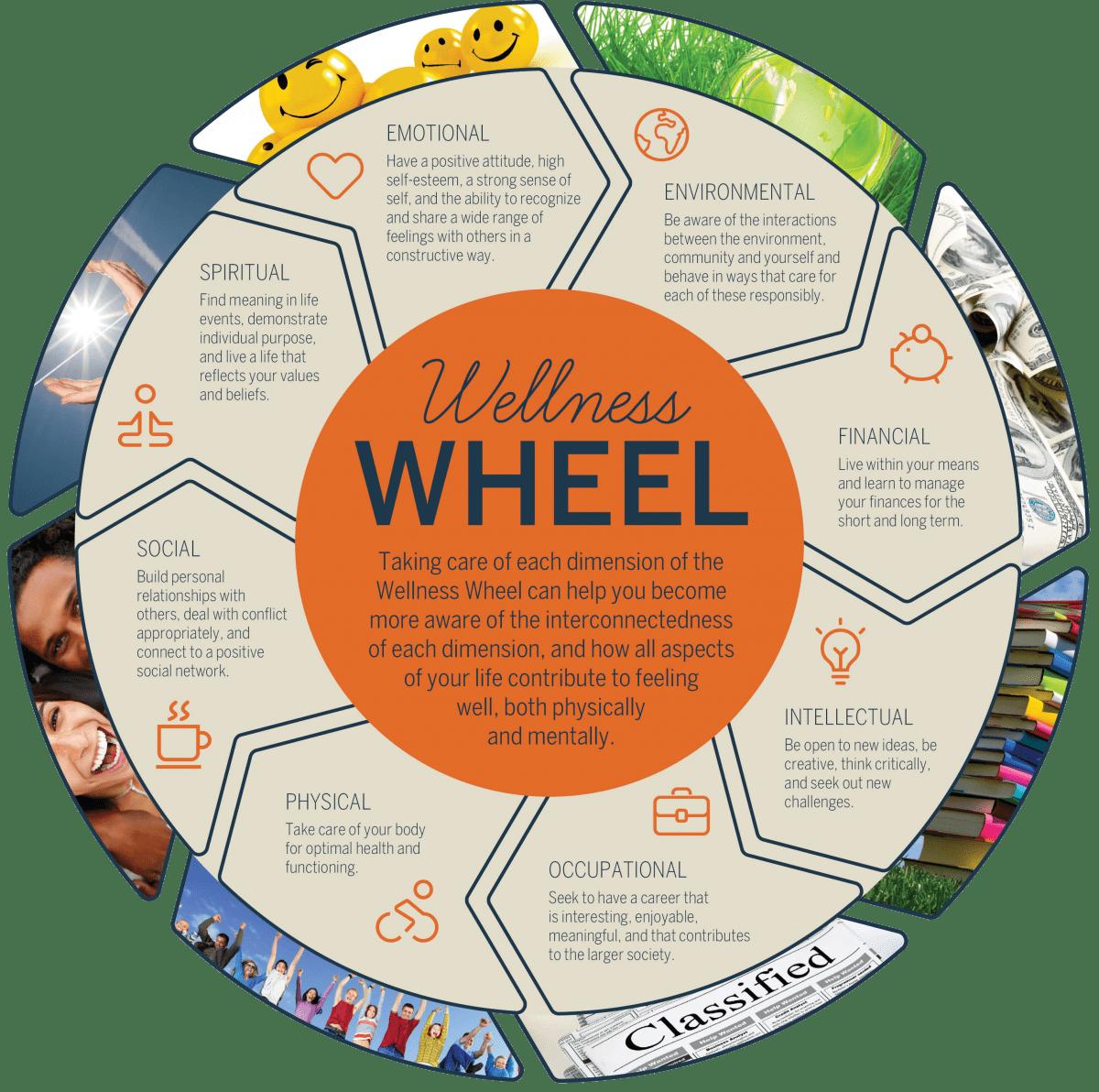 The Preparedness Wheel At A Glance Balance Check For
