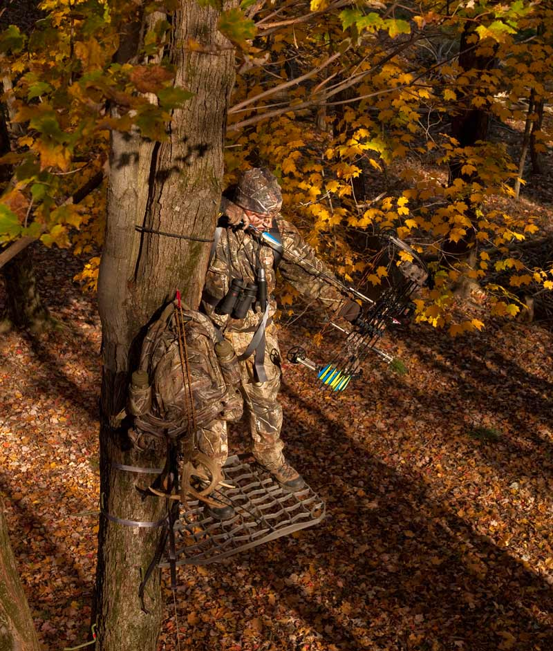 How To Find The Best Tree Stand Locations The Prepper