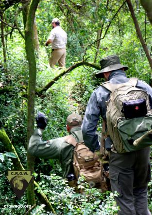 Anti Poaching Rangers track through the jungle