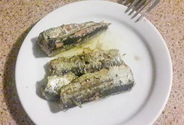 sardine -1