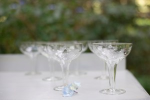 champagne saucer hire