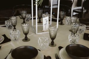 grey glassware hire auckland nz