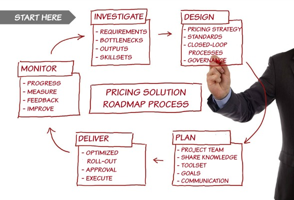 The Pricing Roadmap Process