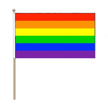 rainbow lgbt hand held pride flag