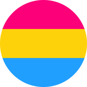 Pansexual Flag Pin Badge For Sale