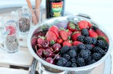 Balsamic Pickled Fruit - www.ThePrimalDesire.com