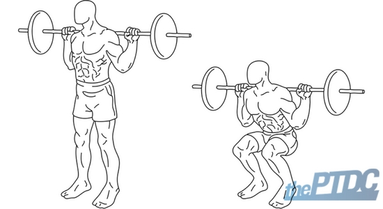 How to Correctly and Properly Assess a Client's Squat