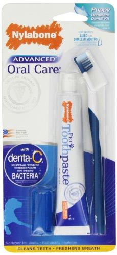 Nylabone Advanced Oral Care Puppy Dental Kit