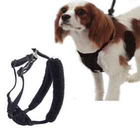 Sporn Small Black Stop Pulling Mesh Harness Neck Size 9″-12″
