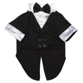 East Side Collection Polyester/Cotton Yappily Ever After Dog Groom Tuxedo, Medium, 16-Inch