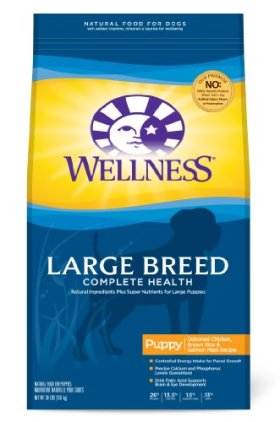 Wellness Large Breed Compelte Health Puppy Recipe, 30-Pound Bag
