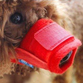 Alfie Pet by Petoga Couture – Matti Adjustable Quick Fit Nylon Mesh Muzzle – Color: Red, Size: Medium