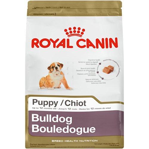 Royal Canin Bulldog Puppy Dog Food, 6-Pound Bag