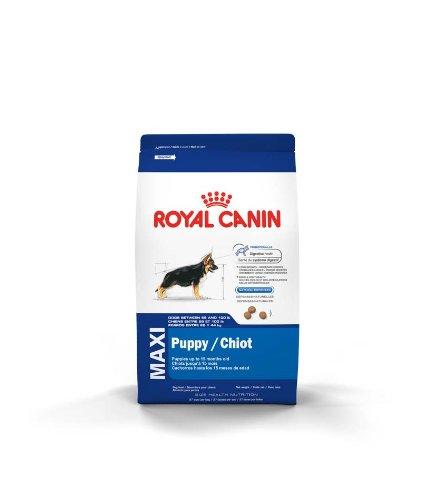 Royal Canin Maxi Puppy Dog Food, 35-Pound