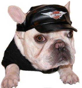 Harley Davidson Vinyl Cap Black Medium