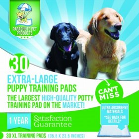 Puppy Pads XL For Potty Training Dogs Indoors. Extra Large – 1 Year Satisfaction Guarantee. Train Your Dog With 30 XL (35.5″ x 23.5″) Leak Proof Pee Pads With Ultra Absorbent Materials – Highest Quality Housebreaking Aid For Dogs! Save Money In Bulk! Try Risk Free!