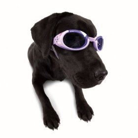 DogglesILS Medium Lilac Flower Frame with Purple Lens Dog Goggles
