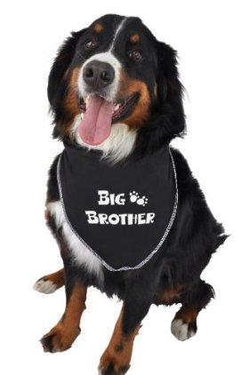 Ruff Ruff and Meow Doggie Bandana, Big Brother, Black, Large