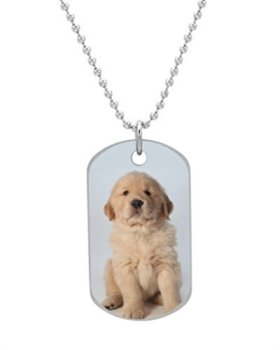 Portrait of six week old golden retriever puppy Fashion Custom Oval Dog Tag (Bigger Size) Pet Tag Neck Chain Key Chain Aluminum Dog Tag Dimensions 1.3X2.2X0.1 inches ,Comes with 30″ inches beads chain
