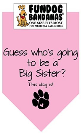 BANDANA – Guess Who's Going to Be a Big Sister for Medium to Large Dogs – Light Pink
