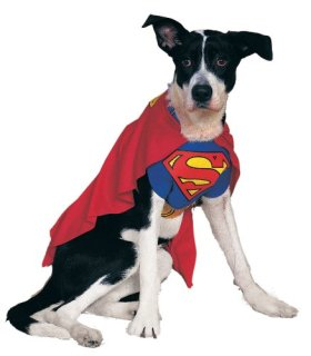 Rubies Costume DC Heroes and Villains Collection Pet Costume, Superman, Large