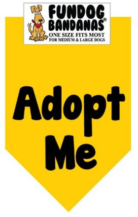 BANDANA – Adopt Me for Medium to Large Dogs – gold with black ink