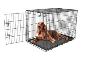 Carlson Secure and Compact Single Door Metal Dog Crate, Intermediate