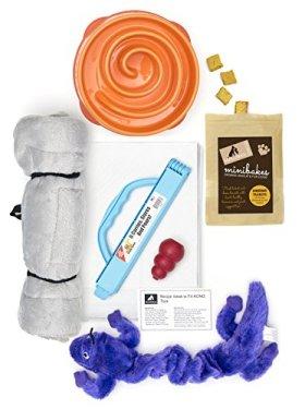 New Puppy Kit | Kyjen Slo-bowl, Kong Classic Small Dog Toy, Zanies Gecko Toy, Organic Treats, Pee Pads, Bag Clip, Plush Mat, Recipe Card