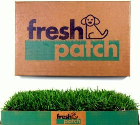 Fresh Patch Disposable Dog Potty with REAL Grass – As Seen on Shark Tank
