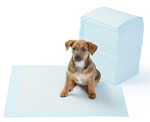 AmazonBasics Pet Training and Puppy Pads, Regular – 100-Count