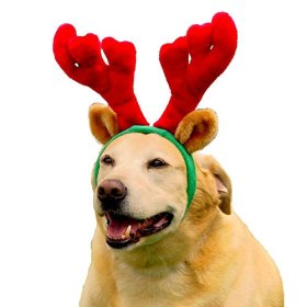 Outward Hound Kyjen  30026 Holiday Antlers Wearable Dog Accessories, Large, Brown