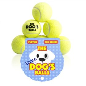 Dog Tennis Balls – 6 Small, High Quality, Tennis Balls – The Little Dog's Balls – Small Dog Balls, Small Dog Ball, Dog Toy for Puppies, Small Dogs or Cute Cats. For Puppy Exercise, Puppy Play, Small Dog Play, Puppy Training and Fetch. For a Smaller Mouth and Too Small for Chuckit Launchers, No Squeaker, the King Kong of Little Dog Balls! Woof Woof:)