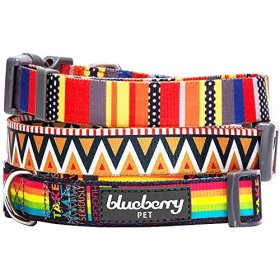 Blueberry Pet 3/8-Inch Elite Basic Polyester Nylon Dog Collar for Puppy with Flame Stitch and Henley Stripes, X-Small