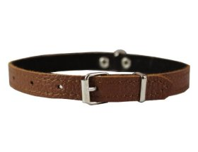 Brown Genuine Leather Felt Padded Dog Collar 13″x1/2″ Wide Fits 9″-12″ Neck, Chihuahua, Yorkshire Terrier, Puppies